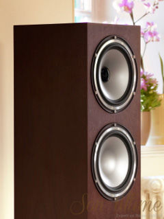 Tannoy Revolution XT Cabinet Son Ultime